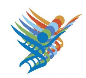 Meso logo 2017 complementaire opleidingen markt IMC