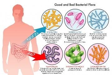 Biotica buikklachten